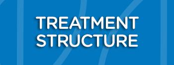 Treatment Structure